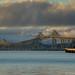 Richmond Bridge Sunrise