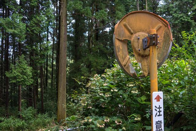 Nishiyama_04