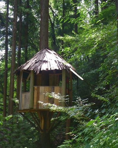 小さなツリーハウス