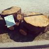 Free #wood anyone? #kitsilano #random #vancity