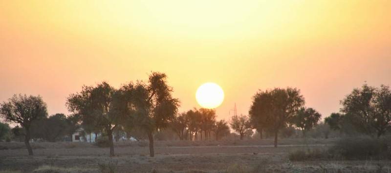310 Camel safari a Jaisalmer (45)