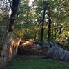 Gift #latergram #busymonday #autumn #sunrise