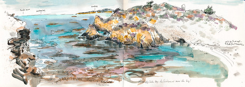 July 2014: Point Lobos