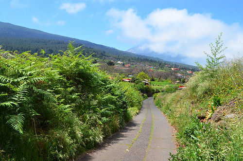 Rural road,La Orotava, Tenerife