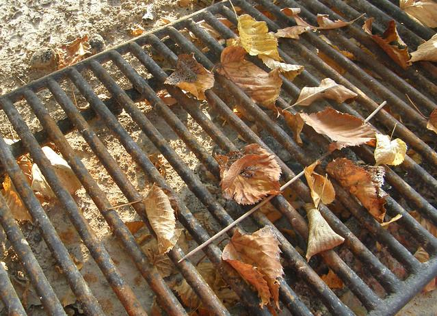 A seasonal grill