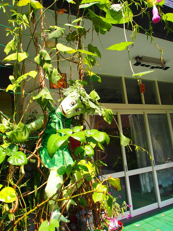 When I walked around Asakusa: Hanging Plant Man