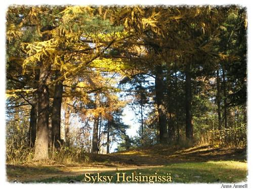 autumn-in-Helsinki