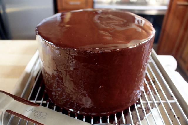 Tricolor Cake - 26