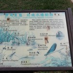 Sab, 09/13/2014 - 11:03 - Parco acquatico di Donglin - 東林海濱公園
