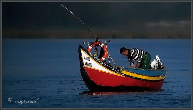 Pescador. Ria de Aveiro/PORTUGAL.