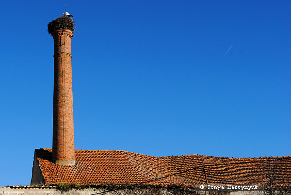 116 - Castelo Branco Portugal - Каштелу Бранку Португалия
