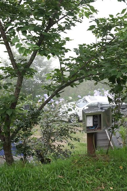 2014.06.22[新竹五峰]兔子先生現身了095