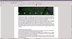 Libreoffice Text Editor