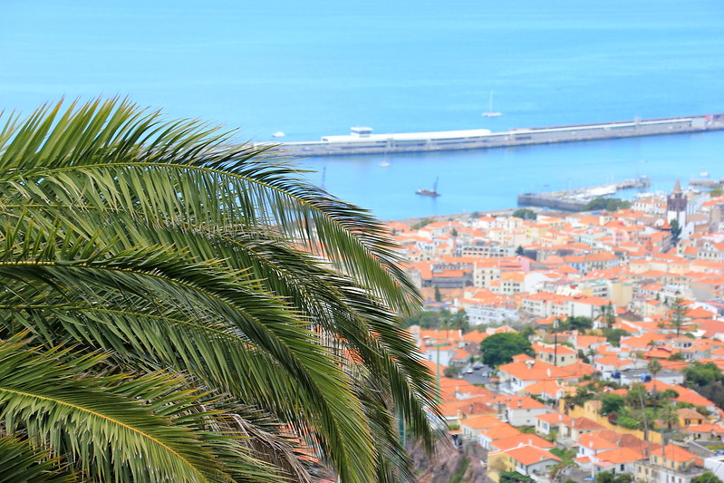 Madeira, Funchal 2014 + ostokset 1196