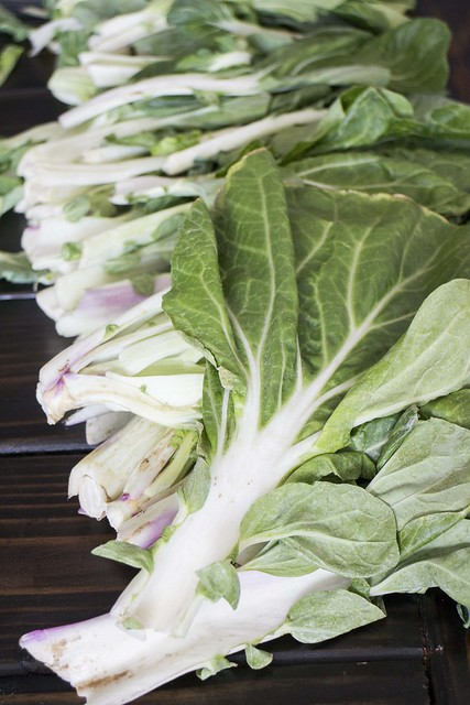 How to Freeze Bok Choy
