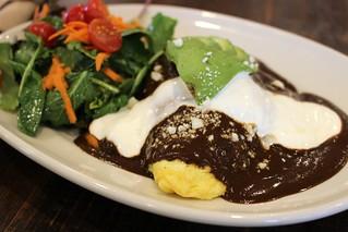Mole Omelet