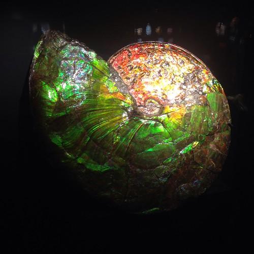 Amolite