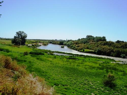 Río Guadalquivir, Peñaflor, Sevilla