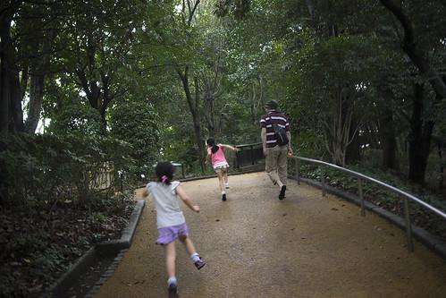 JA C6 22 083 福岡市中央区|福岡市動植物園 α7 FE35 2.8ZA#