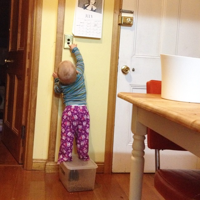 #babyjagoe knows how to stand up on the cat food container and turn the lights on and off.