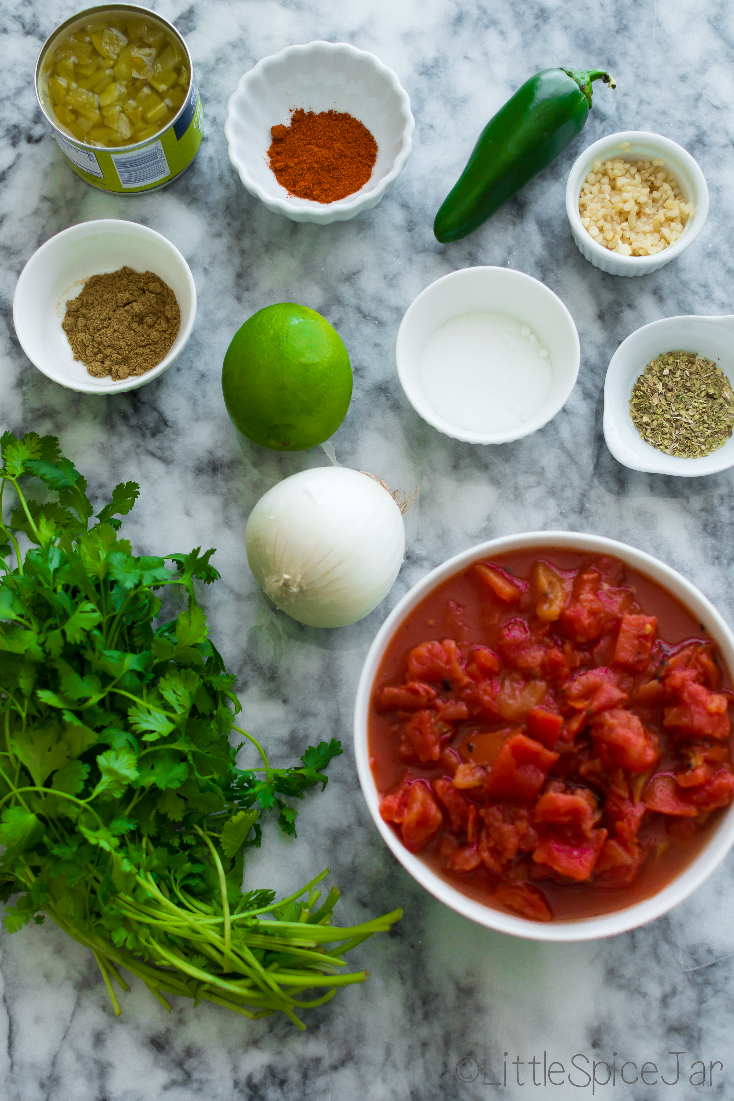 Restaurant Style Fire Roasted Salsa