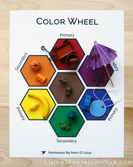 Color Matching Activity Using Small Objects