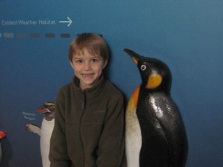 Taller than a Penguin