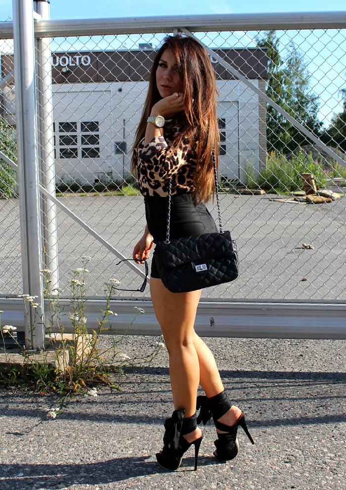leopard 053