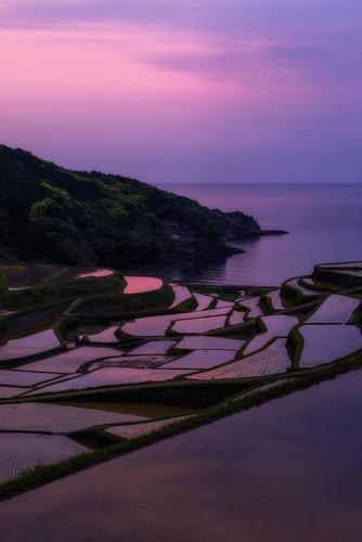 sunset sea sky sun nature water japan landscape spring rice clear saga riceterraces kyushu 九州 佐賀 夕焼け 春 tanada 2013 棚田 日の入り 浜野浦 arcreyes hamanoura
