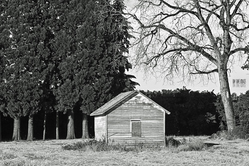 trees white house black tree abandoned oregon canon lens landscape ian photography eos is scary mark shed images haunted ii 5d usm brooks wheatland sane ef70200mm f28l