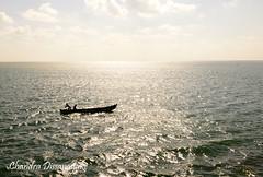 Fishing at Jaffna Lagoon