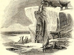 "Image from page 330 of ""Arctic explorations: the second Grinnell expedition in search of Sir John Franklin, 1853, '54, '55"" (1856)"