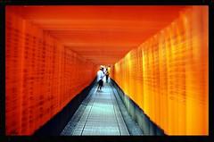 Tunnel Rouge , Voeux d'espoir