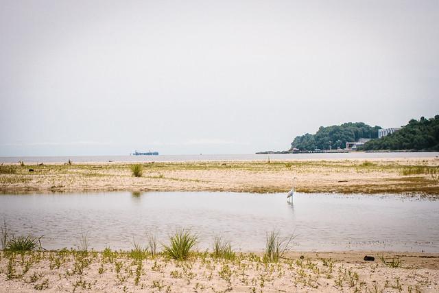 beach (5 of 19)