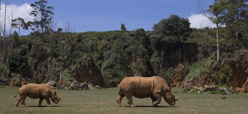 Parque de la Naturaleza Cabarceno