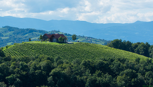 summer macro landscape österreich nikon sommer vineyards tamron 90mm landschaft vc steiermark usd 2014 weinberge südsteiermark kogelberg d7100 southstyria