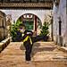 Round Chinese Door