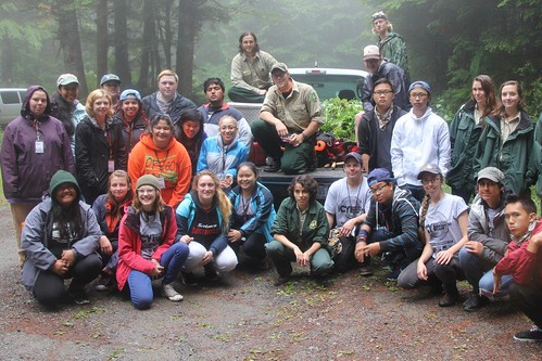 Students from the Inner City Youth Institute acquired a love of the outdoors while removing invasive tansy ragwort from the Drift Creek Wilderness area in the Siuslaw National Forest. (U.S. Forest Service/Brian Hoeh)