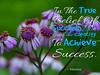 013_Achieve-Success_AR_10_pg14_600x480_Eleesha_Inspiration_Quote_Affirmation01