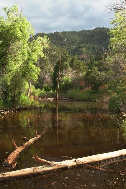 14975737532 ed04edf73a z Red Rock Canyon Open Space: Colorado Springs