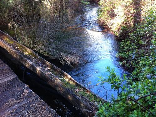 Hoffman's Mill: Bridge and Older Beams On Side