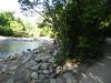 CreekAugust13-2014  :   DSCN2808