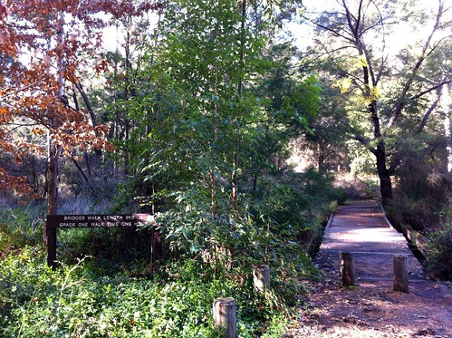 Hoffman's Mill: Start of Trail