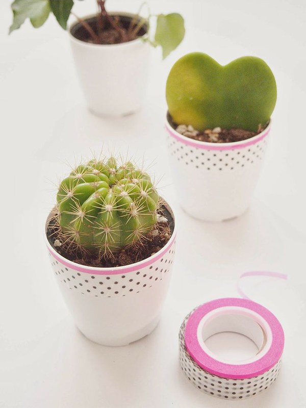 washi tape mini plant pots