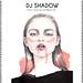 DJ Shadow / THE LIQUID AMBER EP