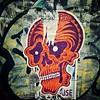 I like his style #skull #Damon #wheatpaste #graffiti #StreetArt #Williamsburg #Brooklyn #NYC