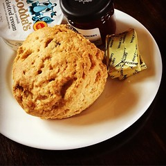 ‪I had a lovely scone last weekend at @BarringtonNT cc @nt_scones ‬
