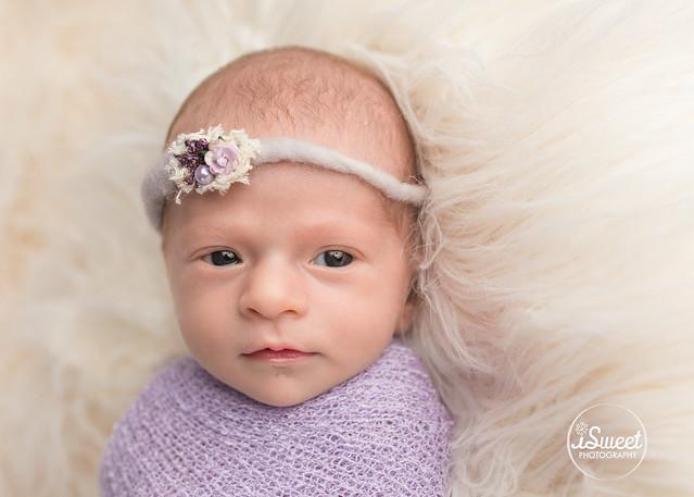 Little baby girl in purple | Newton newborn photographer