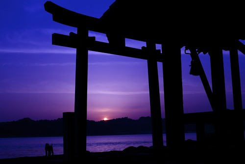 sunset history japan 50mm nikon shrine magic hour shikoku 夕陽 日本 nikkor 神社 鳥居 magichour afs ehime matsuyama 愛媛 四国 松山 歴史 d610 ニコン マジックアワー 単焦点 ニッコール f18g