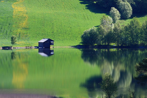 trees house reflection green water norway reflections river landscape norge view greenery gol rv7 nesbyen hallingdalselve